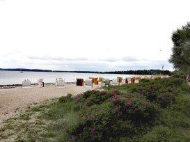Strandkörbe am Strand